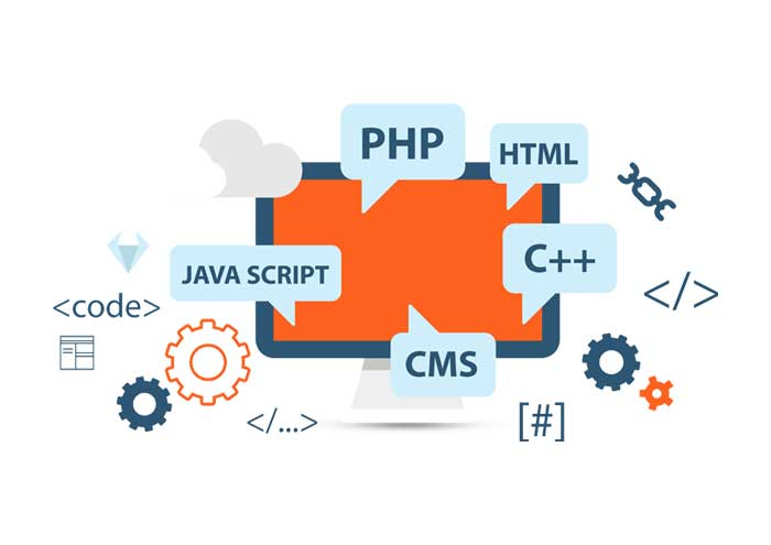 Web Development In Delhi Pitampura Punjabi Bagh