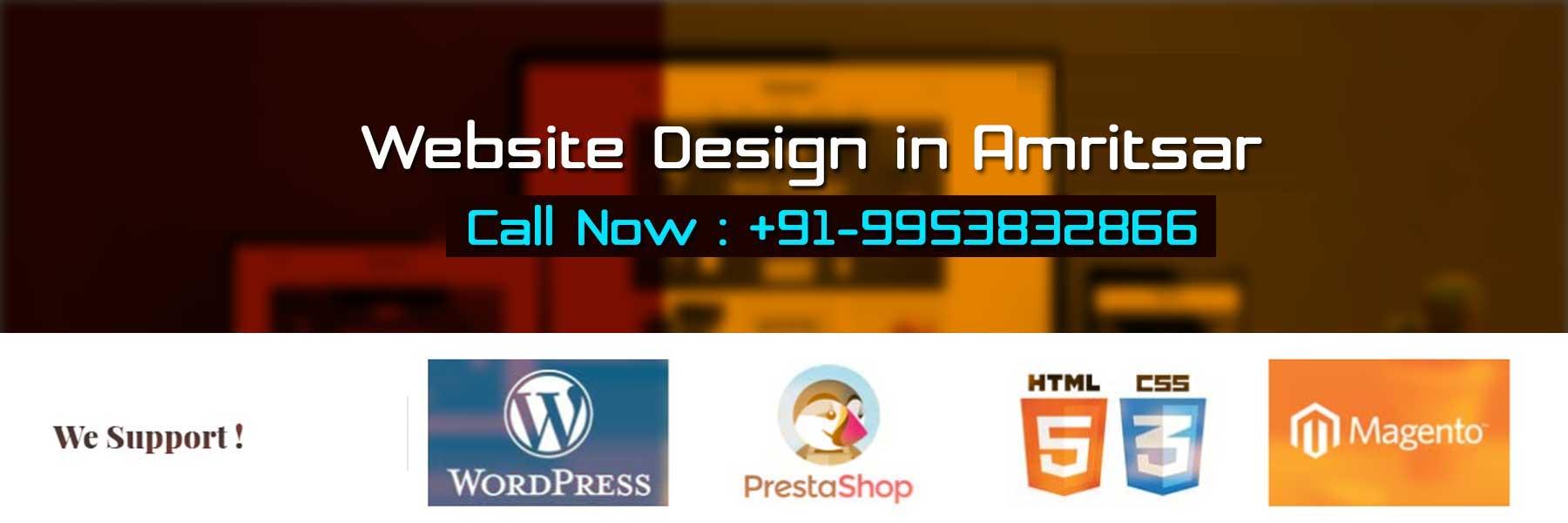Website Design in Amritsar