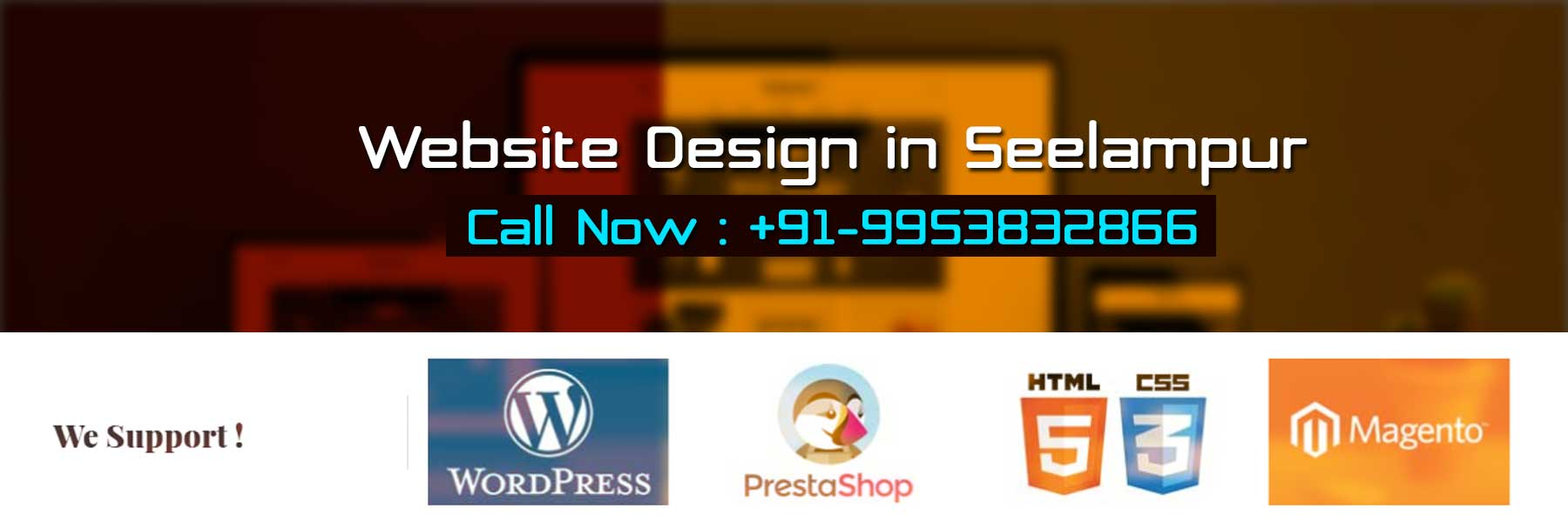 Website Design in Seelampur
