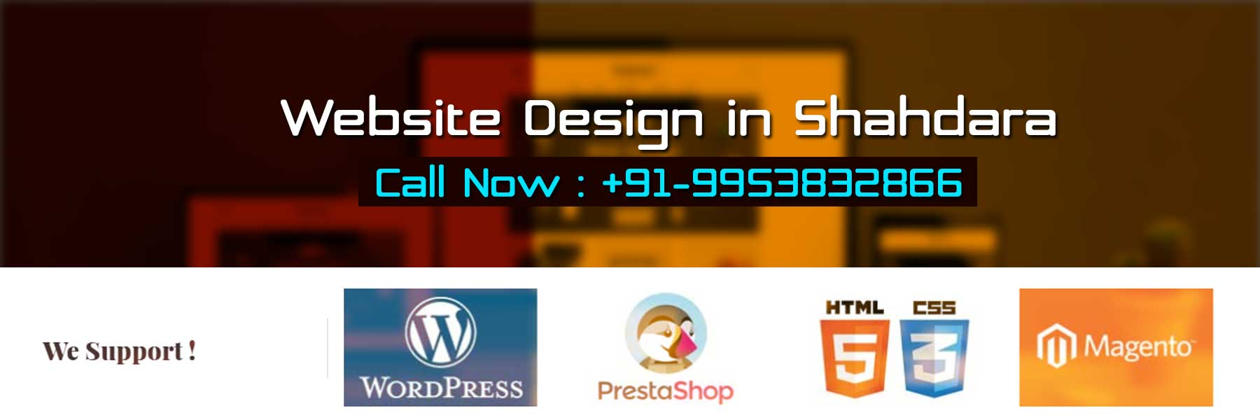 Website Design in Shahdara